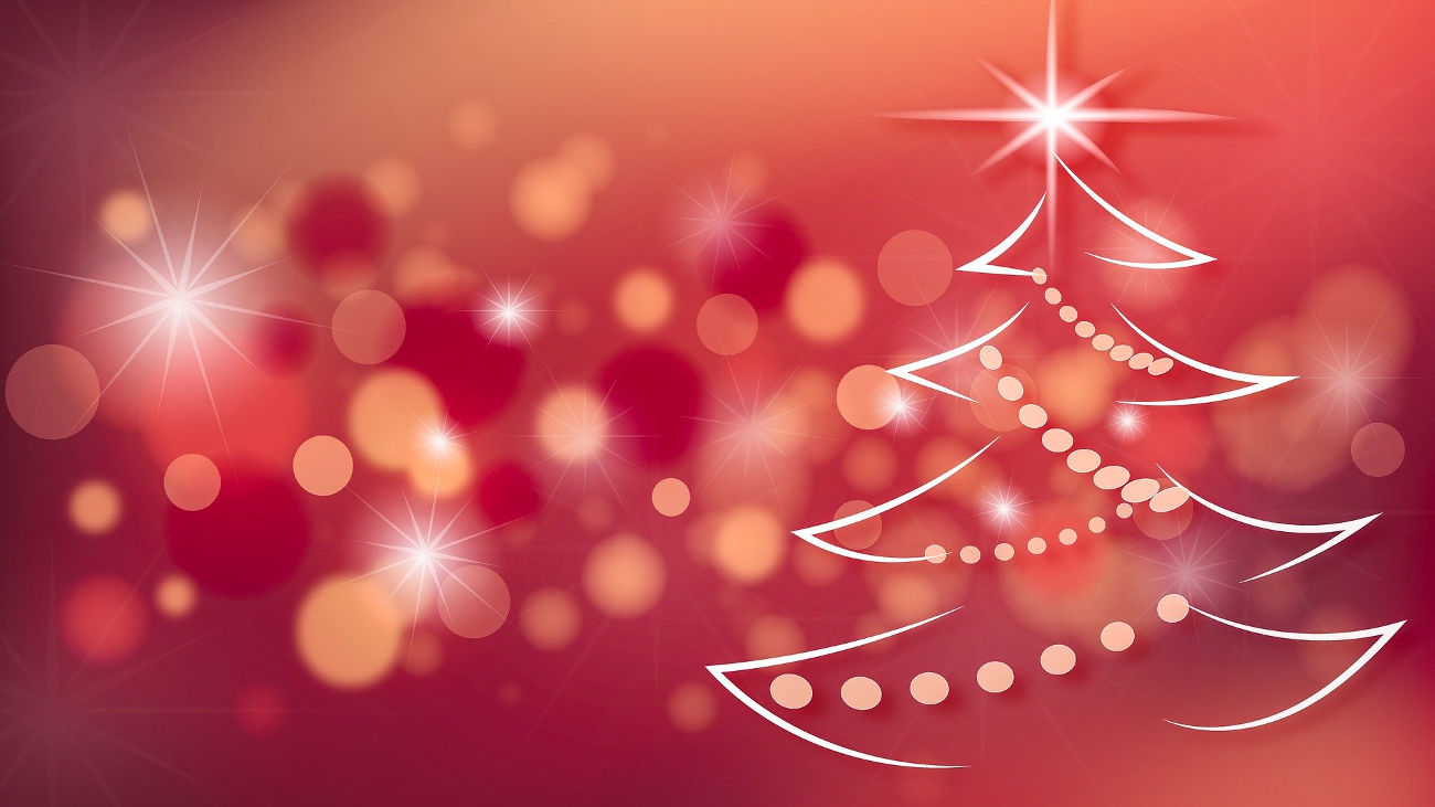 Auguri di Natale con il nostro progetto Treedom
